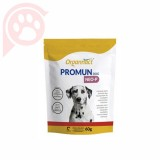 SUPLEMENTO PROMUN DOG NEO-P 60G